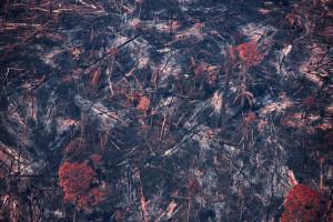 Queimada na floresta amazônica