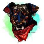 Perro Matapacos