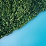 biodiversita-e-servizi-ecosistemici