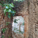 Finestra pietra edera LMS 20 per copertina