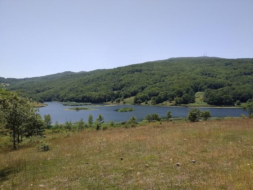 Lago e bosco LMS 20